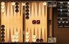 The Backgammon for Windows 8