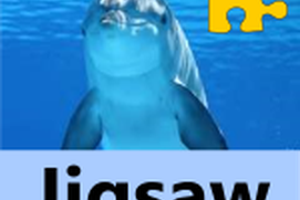 Jigsaw Puzzles : Under The Sea