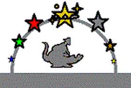 Gator Quest Lvl 1