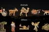 Animals adn Others