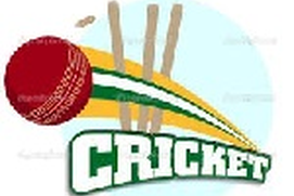Simple Cricket Game