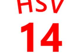 1st4Fans Hamburger SV edition