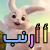 أ أرنب ( أ ب ت - بطاقات تعليمية للحروف الأبجدية)