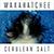 Cerulean Salt Album App