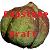 Capstone Draft