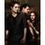 The Twilight Saga Series Guide