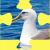 Buller's Albatross Jigsaw Puzzle