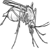 Catch the Aedes Mosquito