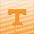 College Fight Songs - Tennessee VOLS Album App