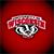 College Fight Songs - Wisconsin Badgers Album App