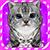 Virtual Pet Kitty Cat