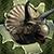 Virtual Pet Dinosaur: Triceratops