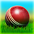Cricket 3D World Street Challenge