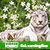 Learn Botany and Zoology by GoLearningBus