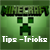 Tips&Tricks for Minecraft-Pocket Edition