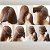 DIY Hairstyles for Ladies