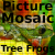 Tree Frogs Picture Mosaic